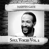 Soul Voices Vol. 2 by Marvin Gaye