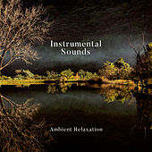 Instrumental Sounds: Ambient Relaxation van Various Artists