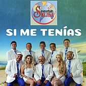Si Me Tenías by Sonora Mejiko