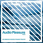 Audio Pleasure Vol.2 (Radio Edits) by Various Artists