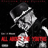 All About The Youths - Single de Eek-A-Mouse