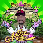 Grow Master - EP by Various Artists