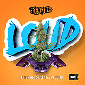 Loud (feat. San Quinn & Spice 1) de Real One