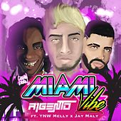 Miami Vibes (feat. YNW Melly & Jay Maly) by A1Gento