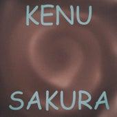 Sakura van Ken-U