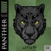 Panther de Aero Chord