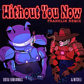 Without You Now (feat. AJ Mitchell) (Franklin Remix) de Digital Farm Animals