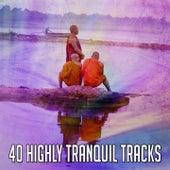 40 Highly Tranquil Tracks de Meditación Música Ambiente