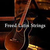 Freed Latin Strings by Gypsy Flamenco Masters