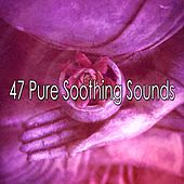 47 Pure Soothing Sounds von Entspannungsmusik