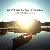 Instrumental Sounds: Ambient Relaxation de David Starsky