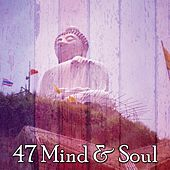 47 Mind & Soul von Lullabies for Deep Meditation