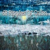 68 Ripples of Calm von Massage Therapy Music