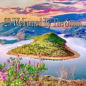 23 Welcomed by the Storm by Rain Sounds and White Noise