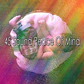 45 Sound Peace of Mind by S.P.A