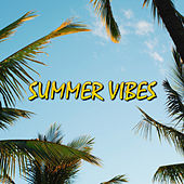 Summer Vibes van Various Artists