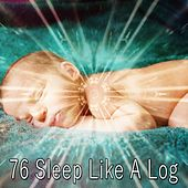 76 Sleep Like a Log de White Noise Babies