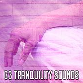 63 Tranquility Sounds de Zen Meditation and Natural White Noise and New Age Deep Massage