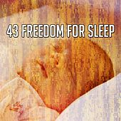 43 Freedom for Sleep de Relaxing Music Therapy