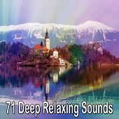 71 Deep Relaxing Sounds de Water Sound Natural White Noise