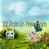 22 Rain in Freedom by Rain Sounds and White Noise