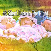 48 Silent Baby in the Night de Nature Sounds Nature Music (1)
