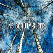 45 Beauty Sleep de Relax musica zen club