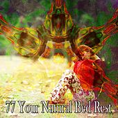 77 Your Natural Bed Rest by Baby Sleep Sleep