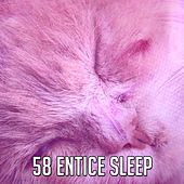 58 Entice Sleep de White Noise Babies