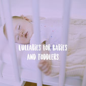 Lullabies For Babies And Toddlers de Various Artists