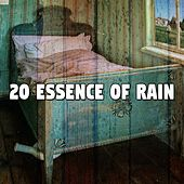 20 Essence of Rain by Rain Sounds and White Noise