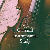 Classical Instrumental Study by Various Artists