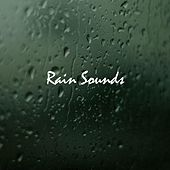 Rain Sounds de White Noise Research (1)