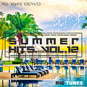Summer Hits Dance Edition, Vol. 12 von Various