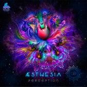 Perception van Aesthesia