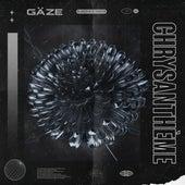 Chrysanthème de Gäze