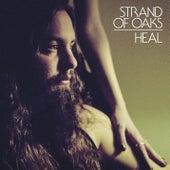 HEAL (Deluxe Edition) de Strand Of Oaks