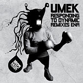 Responding To Dynamic Remixes Ena von Umek