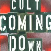 Coming Down de The Cult