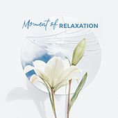 Moment of Relaxation - New Age Collection Created for Relaxation, Rest, Calmness and Tranquility de Best Relaxation Music