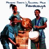 Mamadou Diabate's Percussion Mania: Kamalenya by Mamadou Diabate