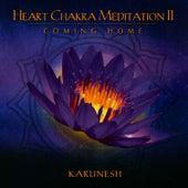 Heart Chakra Meditation II - Coming Home de Karunesh