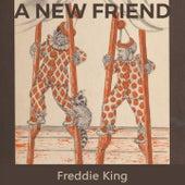 A new Friend by Freddie King