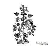 Elements di Two Moons