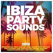 Ibiza Party Sounds 2019 von Various Artists