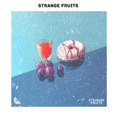 Melhores Eletronicas Strange Fruits 2019 - Top Musicas Eletronicas 2019 von Various Artists