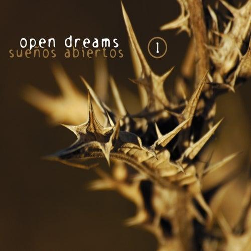 Sueños Abiertos (Open Dreams), Vol. 1 by Various Artists