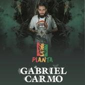 Planta de Gabriel Carmo
