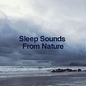 Sleep Sounds By Nature by Rain Sounds