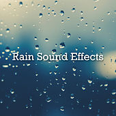 Rain Sound Effects by Rain Sounds